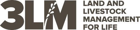 3LM Logo